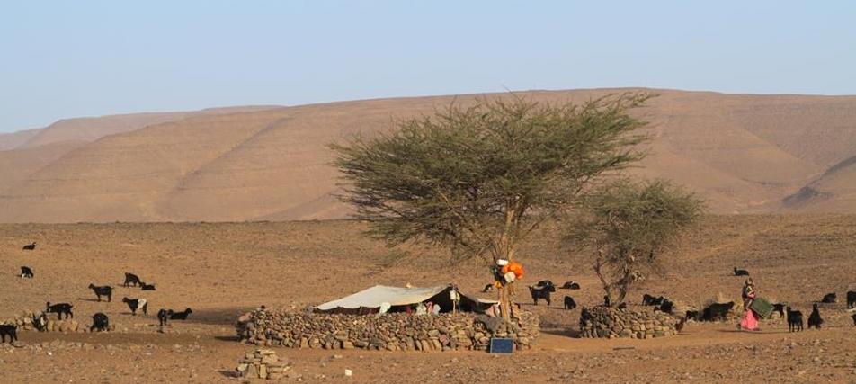 Vie nomade au désert du Maroc