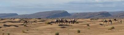 Voyage au désert